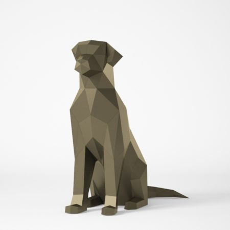 Polygonal dog sitting
